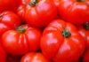 Po Typen Tomate