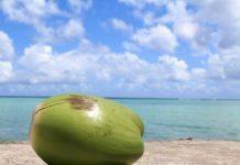 kokoswasser gesund