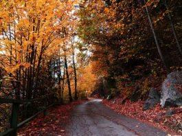 Warum der Herbst besser ist als der Sommer