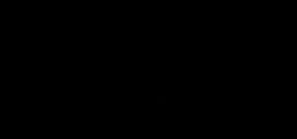 WE GO WILD Logo