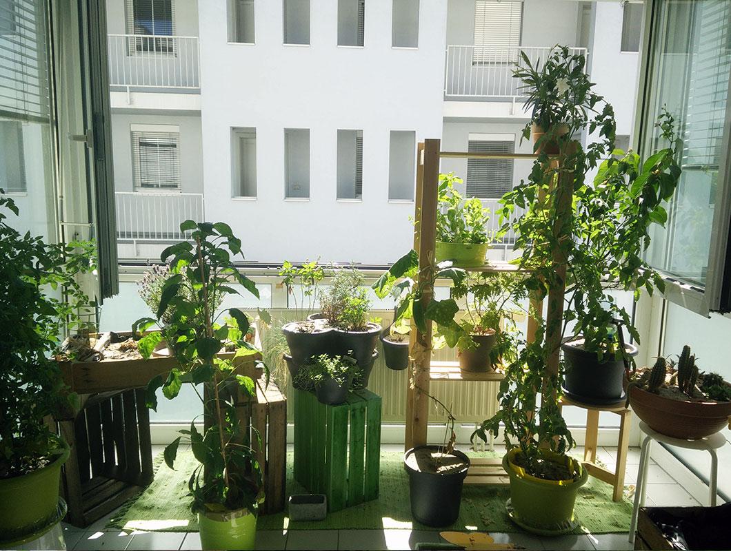 die besten tipps f r deinen mini balkon deko pflanzen und mehr. Black Bedroom Furniture Sets. Home Design Ideas