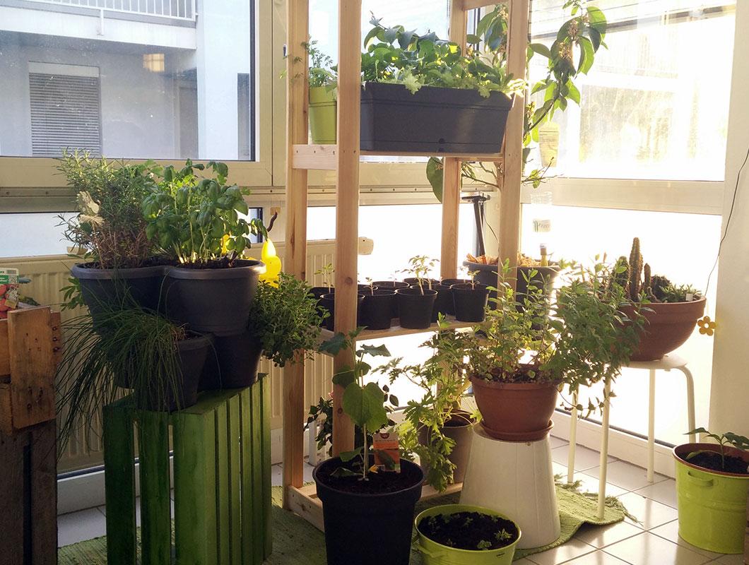 die besten tipps für deinen mini-balkon: deko, pflanzen und mehr, Gartengerate ideen