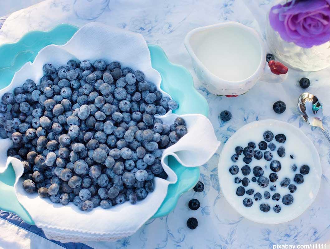Anti Aging Lebensmittel Heidelbeeren