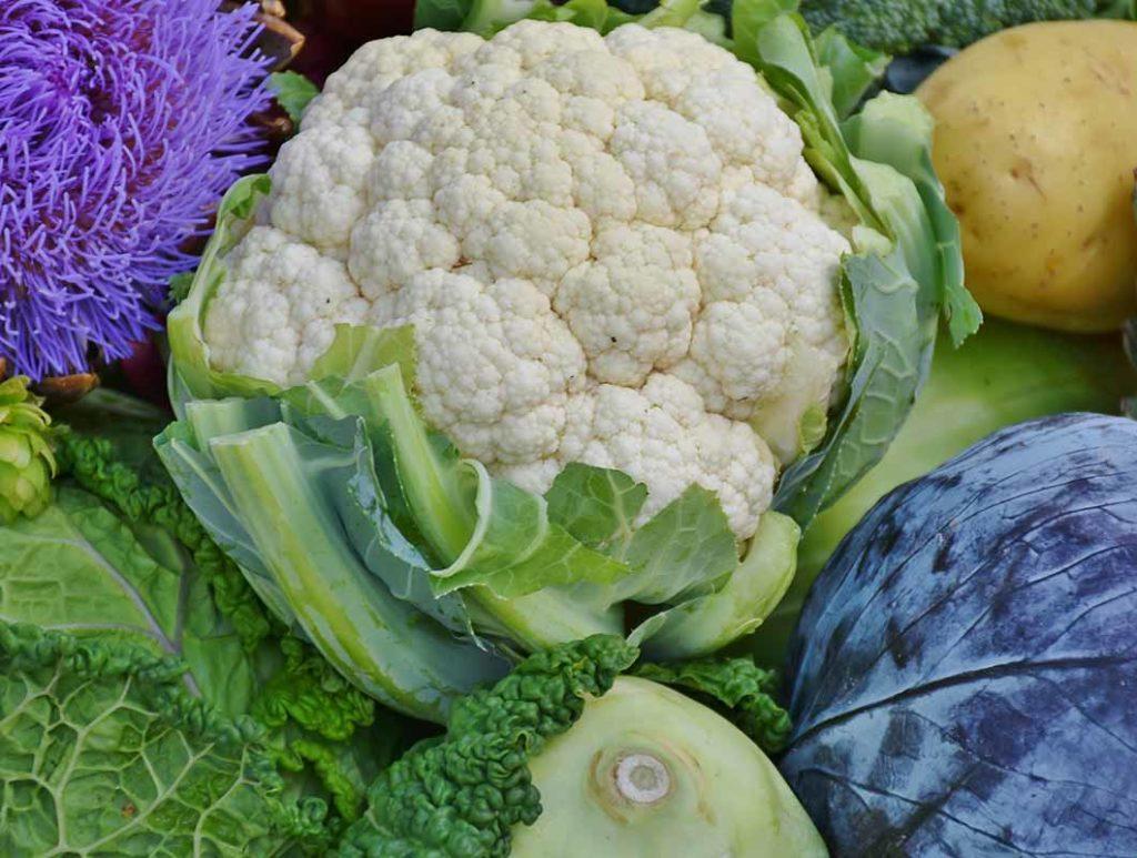 Blumenkohl ist ein Lebensmittel mit wenig Kalorien