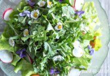 löwenzahn salat rezept mit blüten