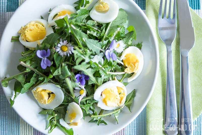 Gänseblümchen im Salat