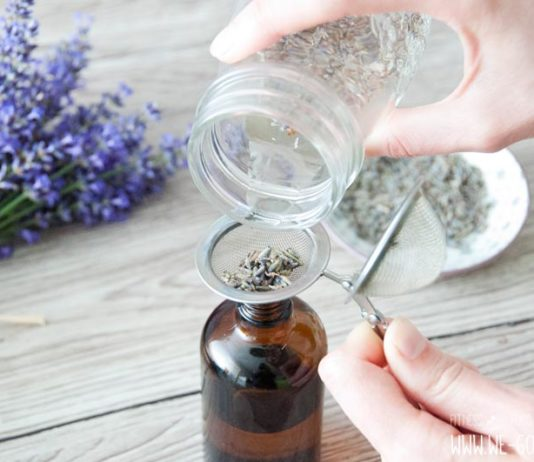 Lavendeloel selber machen Anleitung