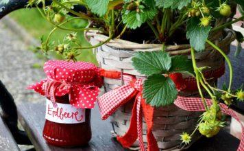 Erdbeermarmelade mit Birkenzucker