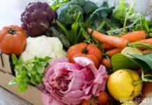 Lebensmittel, die den Stoffwechsel anregen